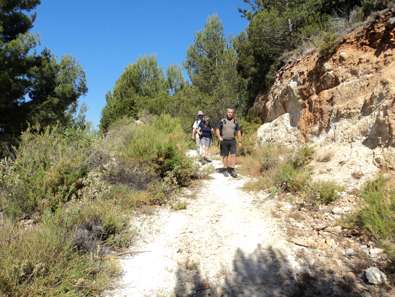 Day7-ascent-to-Llam